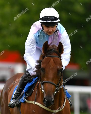 Chikoko Trail ridden by Lenka Helmecka goes down to the start of The Shadwell Stud Racing Excellence Apprentice Handicap  during Fathers Day Racing at Salisbury Racecourse on 17th June 2018