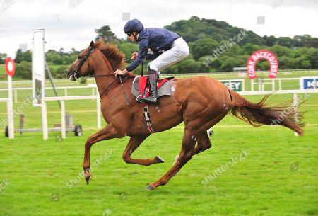 Cork VICTORY SALUTE & Donnacha O'Brien win the Sean Barrett Insurance Bloodstock Maiden