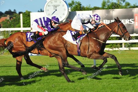 Leopardstown RINCE DEIRNEACH & Gavin Ryan (win the Hudson taylor Apprentice Handicap from DANEHILL QUEST