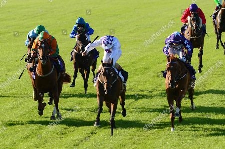 Leopardstown RINCE DEIRNEACH & Gavin Ryan (centre) win the Hudson taylor Apprentice Handicap from DANEHILL QUEST (right) & GROOVY JAZZ (left)