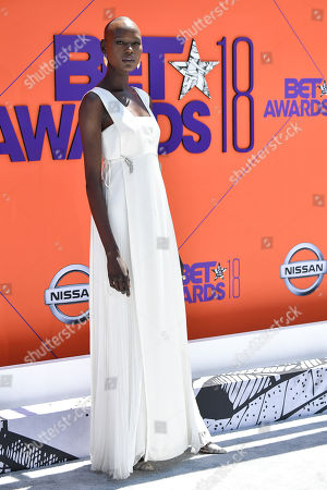 Stock Photo of Ajak Deng