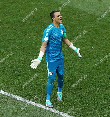 Egypt goalkeeper Essam El-Hadary reacts
