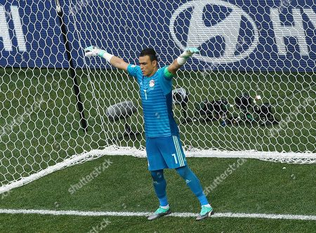 Stock Image of Egypt goalkeeper Essam El-Hadary