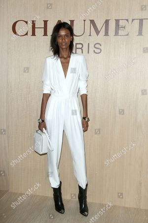 Stock Picture of Liya Kebede