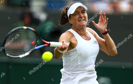 Stock Image of Alexandra Dulgheru in action during her Ladies' Singles second round match