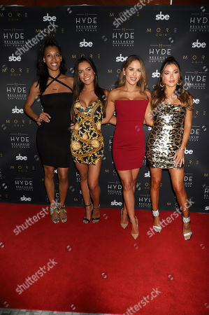 Brooklyn Wren, Luciana Andrade, Brittney Palmer, Arianny Celeste