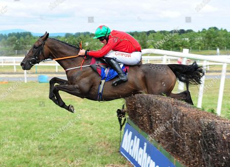 Limerick CLASSIC THEATRE & Davy Russell jump the last to win the Cliona Hagan Beginners Steeplechase.