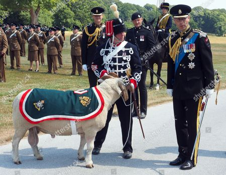 Prince Edward attends Royal Wessex Yeomanry ceremony, Lulworth