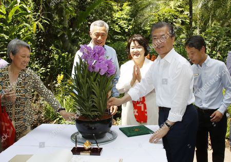 South Korean President Moon Jae-in (R, front) and his wife Kim Jung-sook (3-L), Singapore Prime Minister Lee Hsien Loong (2-L) and his wife Ho Ching (far L), attend a ceremony at the Singapore Botanic Gardens' National Orchid Garden in Singapore, 12 July 2018, to name a newly cultivated breed of orchid after Moon and Kim. Moon became the first South Korean president to take part in such an orchid naming ceremony. The city state has named specially grown orchids after foreign dignitaries as a gesture of goodwill and friendship.