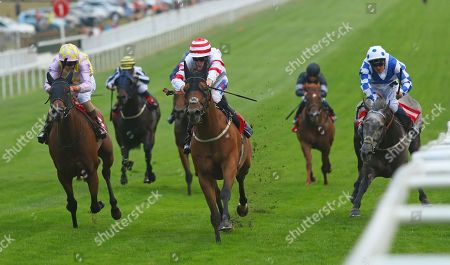 HIGHLAND ACCLAIM (centre) ridden by David Probert beating Seprani (left) and Harry Burns surviving huge stumble on George Dryden in The Visit Our Shop Star Sports Mayfair