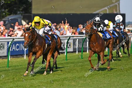 Stock Picture of Winner of The Bob Gibson 60th Birthday Handicap    Blackheath ridden by Liam Kenny and trained by Ed Walker during Ladies Evening Racing at Salisbury Racecourse on 14th July 2018