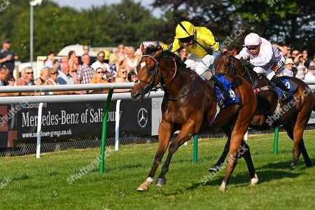 Winner of The Bob Gibson 60th Birthday Handicap    Blackheath ridden by Liam Kenny and trained by Ed Walker  during Ladies Evening Racing at Salisbury Racecourse on 14th July 2018
