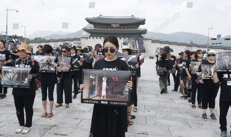 Protest against dog meat consumption, Seoul