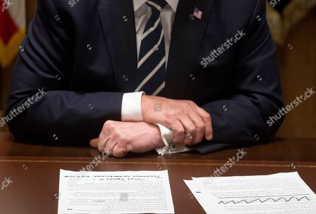 Donald Trump meets with members of Congress, Washington DC