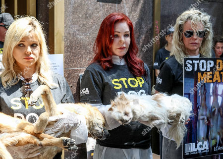 Donna D'Errico, Priscilla Presley, and Kim Basinger