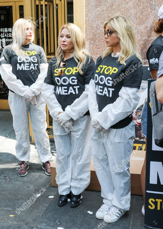Editorial image of Last Chance for Animals Silent Protest, Los Angeles, USA - 17 Jul 2018
