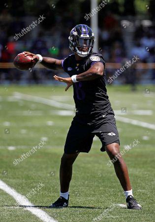 Baltimore Ravens training, Owings Mills