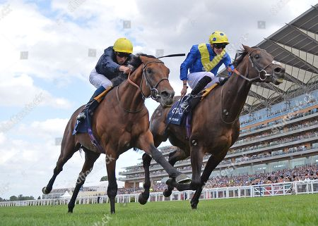 (R) Poets Word (James Doyle) wins The King George Vl and Queen Elizabeth Stakes from (L) Crystal Ocean (William Buick).