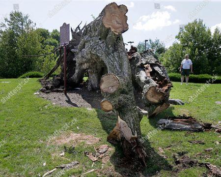 Editorial photo of Historic Tree Storm, Kinnelon, USA - 26 Jul 2018