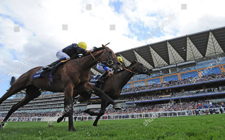 Stock Image of Ascot Racecourse The King George VI and Queen Elizabeth Stakes. Poet's Word ridden by James Doyle (spotted cap) wins from Crystal Ocean ridden by William Buick.
