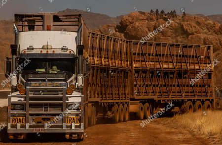 A semi trailer pulls up to unload stock during the 71st annual Harts Range Races and Rodeo, approximately 215 km East of Alice Springs, Northern Territory, Australia, 04 August 2018 (issued 05 August 2018). Cut out of the bush of Mt. Riddock Station by The Webb brothers, The Harts Range track has been a mainstay of the Central Australian Pastoral communities since 1947. Unregistered station horses, local ringers, mounted police and Atitjere community members race, rodeo and revel in the bush skills they use every day with most of the money generated going to charity.