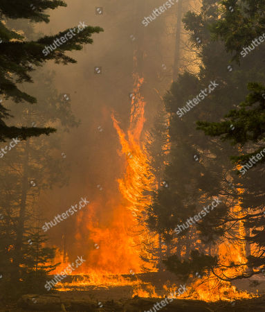 The Donnell Fire in Tuolumne County is advancing fast along Highway 108.