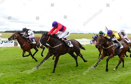 CURRAGH. HAMMERSMITH and Ben Cen beats CHERNISH (far) for tainer James Nash.