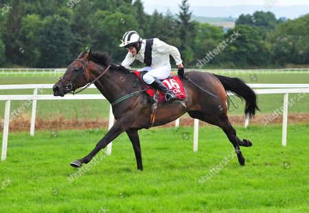 Stock Image of Cork STACEY SUE & Tim Hyde win the Cork Racecourse FLat Race.