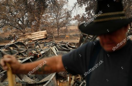 A deer walks by as Ed Bledsoe searches through what remains of his home, in Redding, Calif. Bledsoe's wife, Melody, great-grandson James Roberts and great-granddaughter Emily Roberts were killed at the home in the Carr Fire