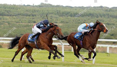 Horse Racing 14 Aug 2018 Stock Photos (Exclusive) | Shutterstock