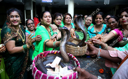 Indian women devotees pray to a king cobra snake on the eve of the Nagpanchami festival in Bhopal, India, 14 August 2018. Nagpanchami is a traditional festival which is celebrated on the fifth day of the moonlit-fortnight in the holy month of 'Shravan' which falls in the months of July and August. People worship snakes and offer them milk during this festival.