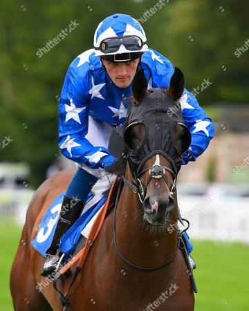 Editorial picture of Summer Holiday Family Races featuring Sovereign Stakes (Group 3) , Horse Racing, Salisbury Racecourse, Wiltshire, United Kingdom - 16 Aug 2018