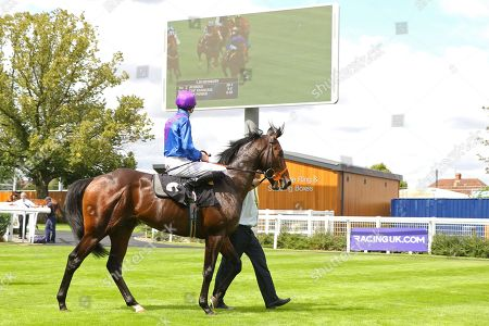 ATHMAD James Doyle watches the replay on the way in after winning The Don Deadman Memorial EBF Maiden Stakes at Newbury Copyright: Ian Headington/racingfotos.com