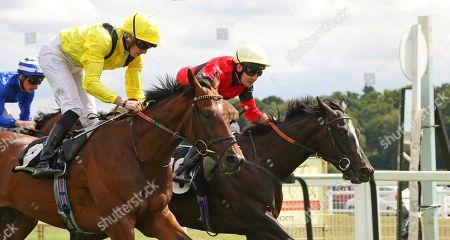 BOERHAN (yellow) ridden by James Doyle & SHEILA'S SHOWCASE (red) ridden by Charles Bishop dead heat for The Don Deadman Memorial EBF Maiden Stakes at Newbury Copyright: Ian Headington/racingfotos.com