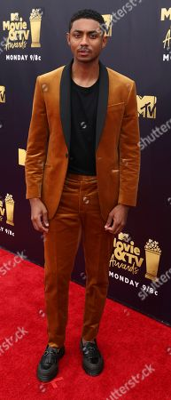 Editorial picture of 2018 MTV Movie and TV Awards - Red Carpet, Santa Monica, USA - 16 Jun 2018