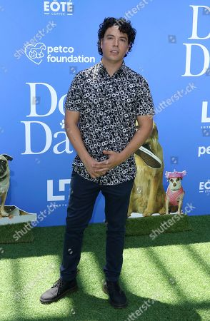 """Editorial picture of World Premiere of """"Dog Days"""", Los Angeles, USA - 5 Aug 2018"""