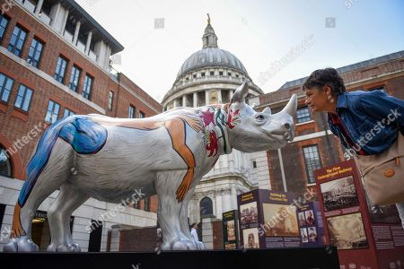 Loredana Rivera, a tourist from Italy, views by 'Marjorie', a rhino painted by Eileen Cooper, in Paternoster Square. At 750mm tall and weighing 300 kg, each rhino has been specially embellished by an internationally renowned artist.