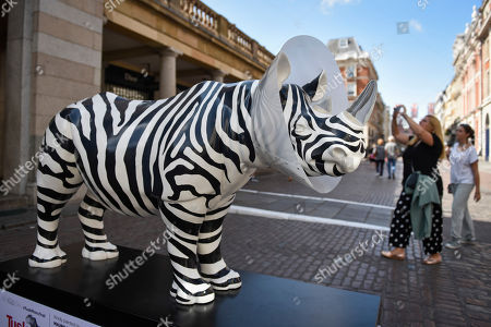 Editorial picture of Rhinos on the Tusk Rhino Trail, London, UK - 20 Aug 2018
