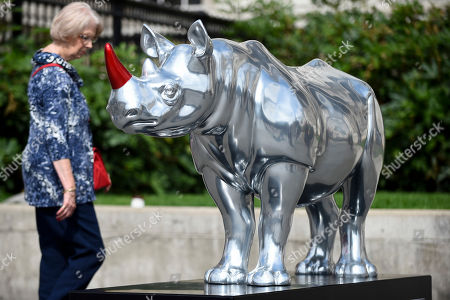 A woman views a rhino by Gerry McGovern in Trafalgar Square. At 750mm tall and weighing 300 kg, each rhino has been specially embellished by an internationally renowned artist.