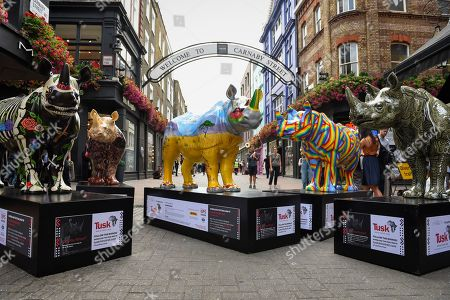 Painted rhinos presented at a photocall in Carnaby Street, (L to R) by David Mach, The Chapman Brothers, Ronnie Wood, Patrick Hughes and Adam Dant. At 750mm tall and weighing 300 kg, each rhino has been specially embellished by an internationally renowned artist.