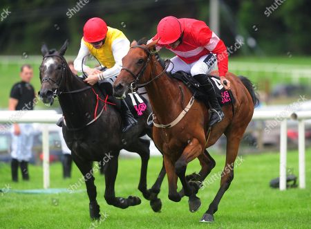 Sligo ELGANTINE DU SEUIL & Ruby Walsh (right) win the Hop House 13 Lager Mares Maiden Hurdle from MISTY MOUNTAIN & Liam McKenna (left)