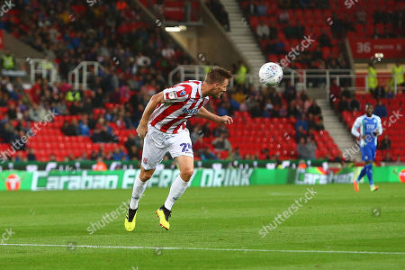 Stoke's Darren Fletcher in action in front of Carabao branding on the LED ad board