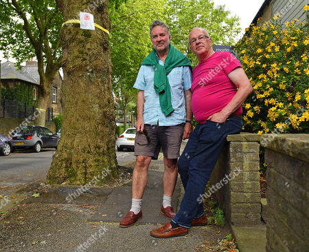 Stag Activists Arthur Baker 67 (l) And Alan Story 69(r) In Western Rd. Sheffield Next To Trees Planted In Memorial Of Soldiers Who Died In Ww1.- Robert Hardman Meets Residents Of Sheffield South Yorkshire Trying To Stop Their Street Trees From Being Cut Down.