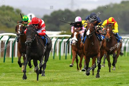 Winner of The Join The Richard Hughes Racing Club Today Nursery  Hallalulu (red cap) ridden by Charles Bishop and trained by Ed Dunlop during Evening Racing at Salisbury Racecourse on 24th August 2018