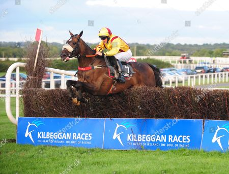 KILBEGGAN FREEWHEELIN DYLAN and Conor Maxwell jump the last to win The Sean Hughes Memorial Handicap Steeplechase. Healy Racing