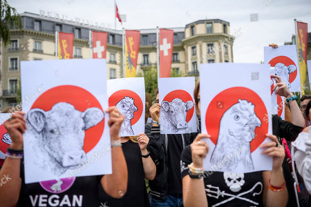 Geneva March for the End of Speciesism switzerland 2018 ile ilgili görsel sonucu