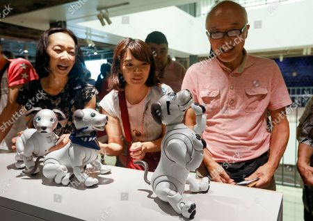 Sony robot dog aibo owners fans play Editorial Stock Photo