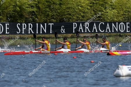 Spain´s Saúl Craviotto, Marcus Walz, Cristian Toro,  Rodrigo Germade on the way to take second on the K4 men 500m final at 2018 ICF Canoe Sprint World Championships, in Montemor-o-Velho, center of Portugal, 26 August 2018. The event runs from 23 until 26 August.