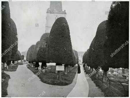 Painswick Clipping - the Churchyard in Gloucestershire with Neatly-trimmed Yews. Photograph by Benjamin Stone in 'Sir Benjamin Stone's Pictures', Page 19