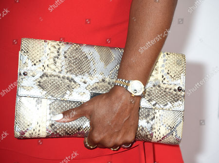 Keshia Knight Pulliam, purse detail